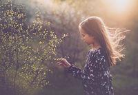 Пролет е; comments:15