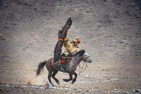 Mongolian Eagle Hunter; comments:34