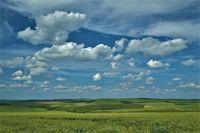Ниви и облаци !; comments:8