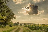 Късен облачен следобед в провинцията.; comments:2