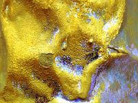 Златният Телец; comments:17