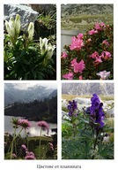 no name ( ID=2174677 ); comments:7