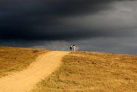 По пътя на лятната буря.; comments:1