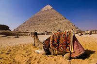 Просто обикновен ден над пирамидите в Гиза; comments:11