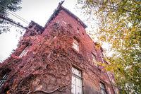Есенната къща; No comments