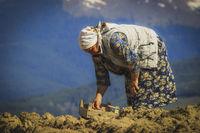 Живот в Родопите.; comments:4