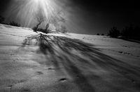 Светлина и Сянка; comments:9