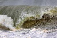 Морска стихия; comments:12