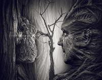 Roots; comments:11