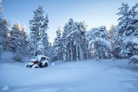 Зимна приказка от местност Бяла черква; comments:4