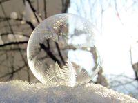 Ледени фантазии в един сапунен мехур; comments:5