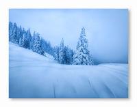 Разказ за зимата; comments:12