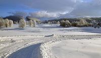 Зима; comments:10
