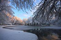 Зимни дни; comments:9