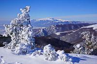 От връх Саръяр (Стара планина) На хоризонта връх Триглав; comments:7
