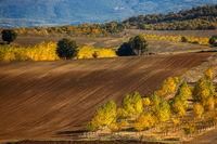 Есен в полята; comments:11