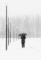 Снежно; comments:8