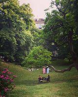 по столичните паркове; comments:3