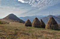 Късна есен в Бабинци; Коментари:2
