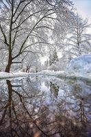 Зимни отражения; Коментари:4