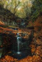 Родопска есен; Коментари:5