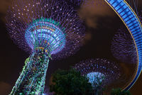 Neon mushrums of Marina Bay sand Gardens; comments:3