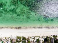 Плажът; comments:1