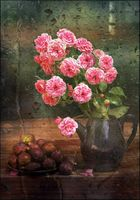no name ( ID=2207161 ); comments:28