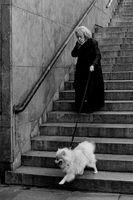 По стълбите; comments:10