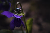 no name ( ID=2213802 ); comments:7