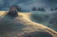 Утро в Трансилвания... Коментари: 19 Гласували: 82