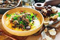 Wild Mushroom Polenta; comments:2