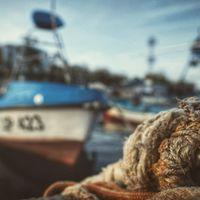 Изпрати ми морето...; comments:16