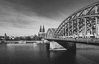Cologne; comments:9