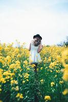 Жълто; comments:4