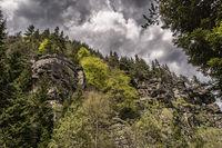 Магията на Родопа планина; comments:6