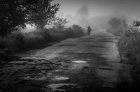 Пътя към бъдещето е обвит в мъгла; comments:12