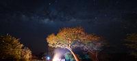 Млечен път над бивака - Katavi NP, Tanzania; comments:3