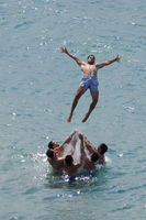 Лятото и морето; comments:1