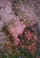 Wide field with North America nebula and Pelican nebula; comments:3