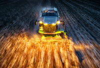 Жътва на царевица в Русенско; comments:20