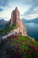 Segla, Senja, Northern Norway; comments:8