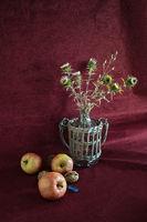 Натюрморт с ябълки; comments:5
