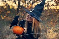 Happy Halloween; comments:3