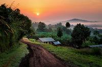 Село в Уганда; comments:3