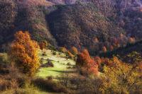 Родопа и нейната есен; comments:6