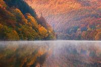 Пасарелска есен; comments:11