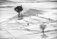 Зимна импресия