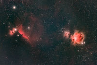 Flame, Horsehead and Great Orion Nebulas; comments:7
