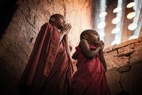 Малките монаси; comments:6